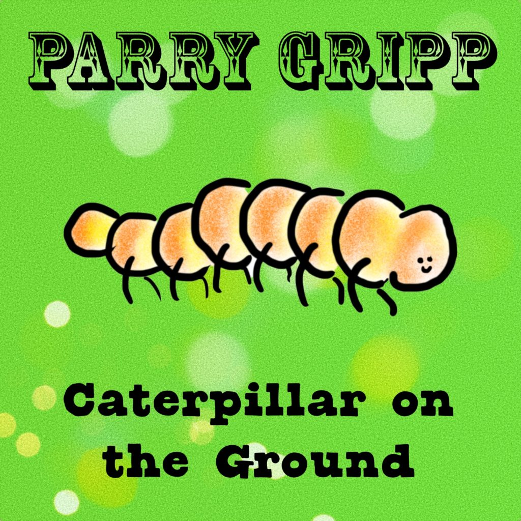 Caterpillar On The Ground